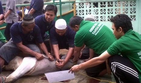Read more about the article Kajian Makna Historis Idul Adha Bagi Seluruh Umat